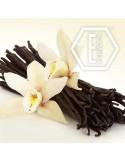 NicVape - Vanilla flavor